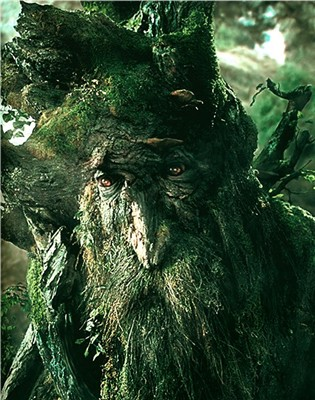 http://www.willisms.com/archives/treebeard.jpg